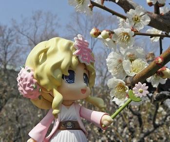 桜春ちゃん