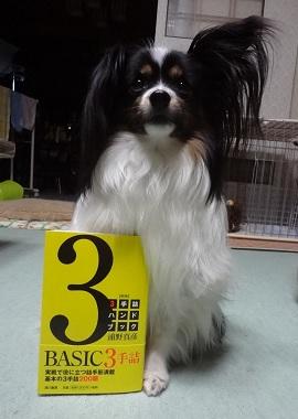 wasabi20140301