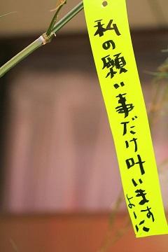 tanabata201602