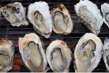 サロマ牡蠣祭り2016