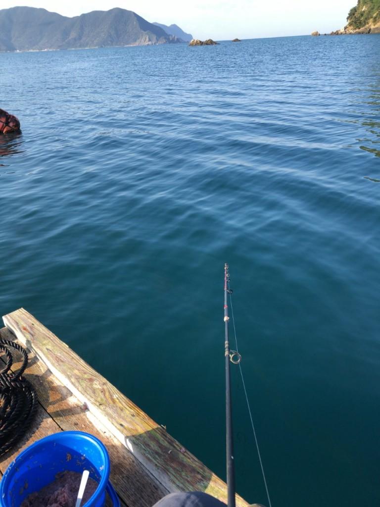 宇検のイカダで魚釣り