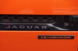 jaguar03691