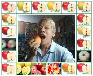 りんご大好きs