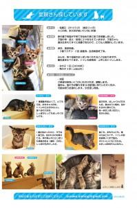 KONEKO_0809s のコピー