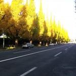 2013-11-16_081356.jpg