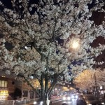 2014-03-30_184206.jpg