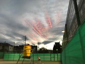 テニス部連【佐藤直子のテニスがすべて】