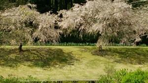 2kawamura201504