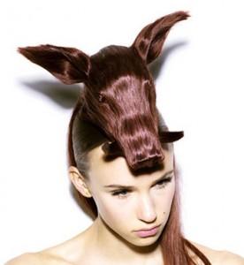 pig_hair