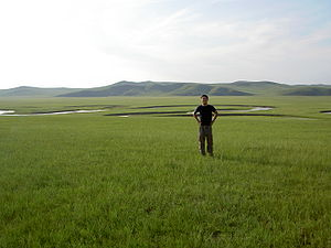 300px-Vincent_in_grasslands